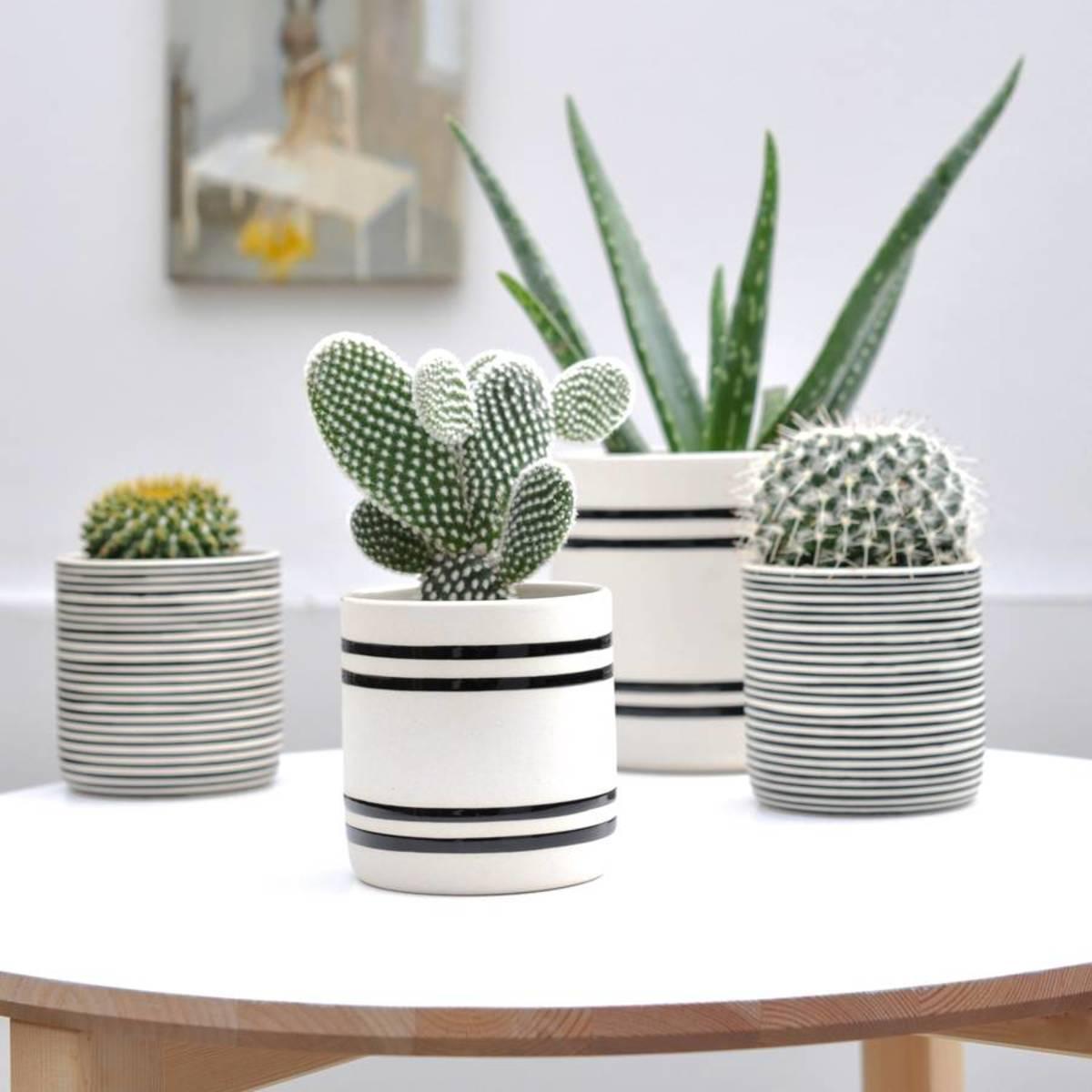 henry-future-faja-handcrafted-pot