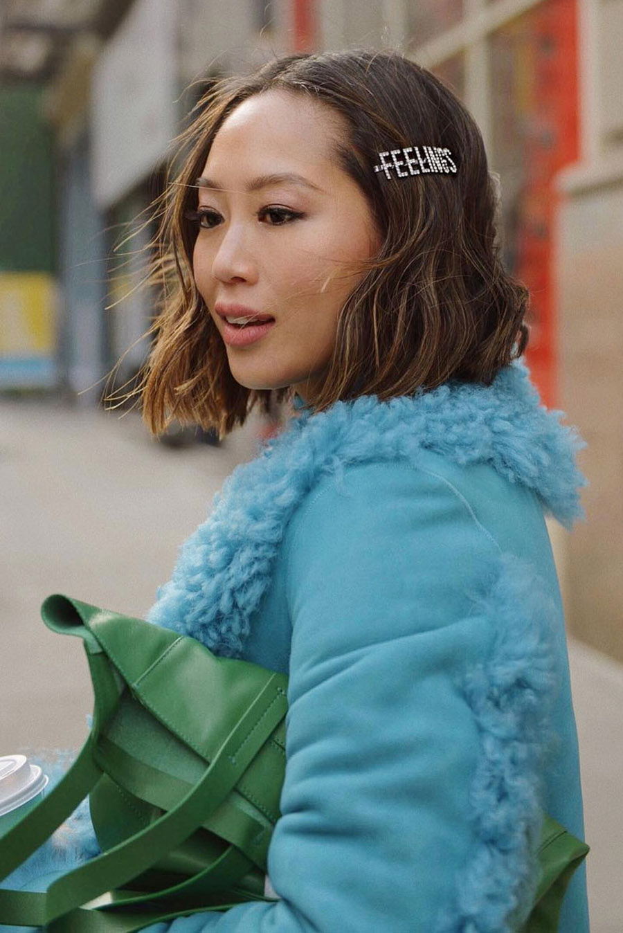 Aimee_song_of_style_blue_Shearling_coat_paris_texas_blue_snakeskins_knee_high_boots_tibi_green_bagArtboard-1-1